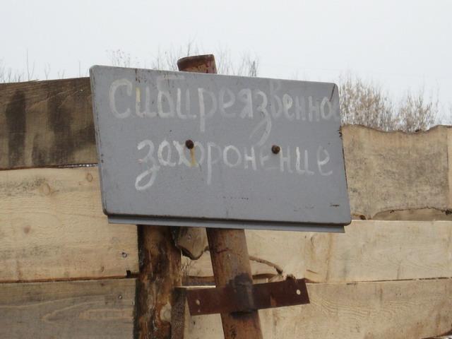 sibya4.jpg